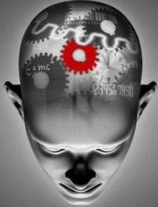 Working of the Human Brain