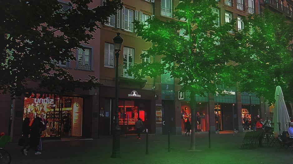 Woodlight - lumière naturelle - startup détectée par EDF